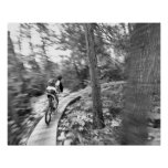 Montaña de Aaron Rodgers biking en la escalera a Poster