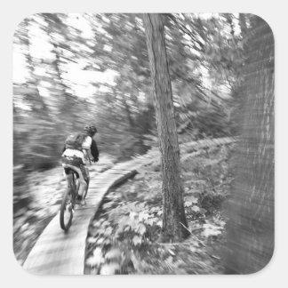Montaña de Aaron Rodgers biking en la escalera a Pegatina Cuadrada