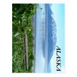 Montaña de Alaska a lo largo del brazo de Turnagai Tarjeta Postal