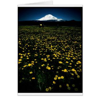 montaña de la flor del diente de león tarjetas