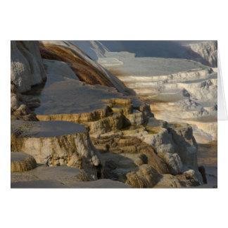 Montaña de la terraza en Mammoth Hot Springs Felicitaciones