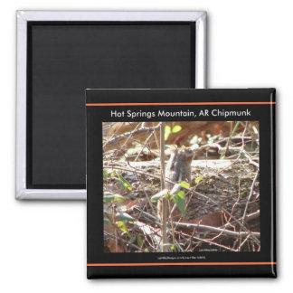 Montaña de las aguas termales, regalos del Chipmun Imán Cuadrado