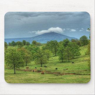 Montaña de Sugarloaf Tapetes De Ratones
