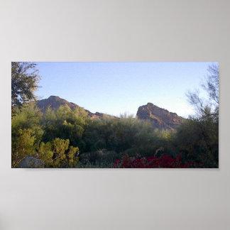 Montaña del Camelback Poster