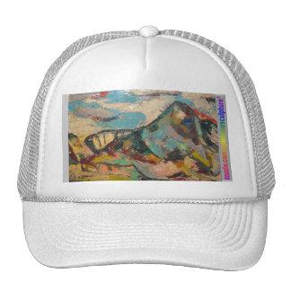 Montaña del color de DSCN9756 Syd Shano Gorra