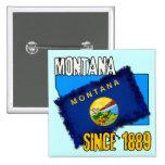 Montana, desde 1889 pin