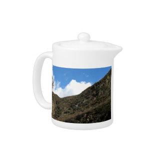Montaña dramática 12