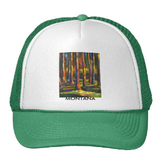 Montana Forest Hat