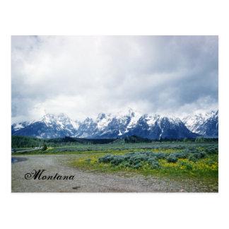 Montana Hills Landscape Beautiful 1950's Postcard