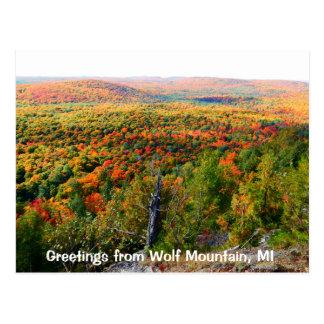 Montaña Michigan del lobo en la caída Postal