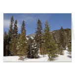 Montana Mountain Trails in Winter Landscape Photo Card