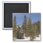 Montana Mountain Trails in Winter Landscape Photo Magnet