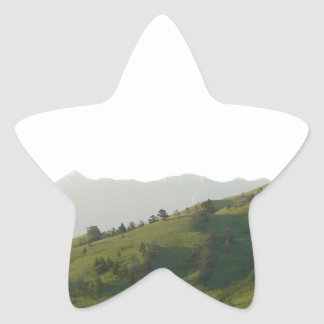 Montana Mountain Vista Star Sticker