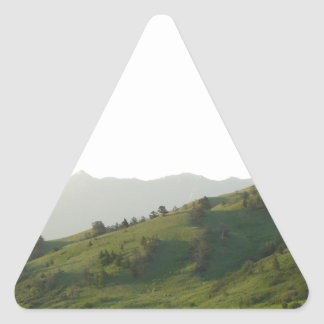Montana Mountain Vista Triangle Sticker