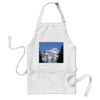 Montaña Nevado Delantal