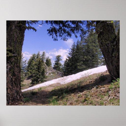 Montaña Snowbank de junio Poster