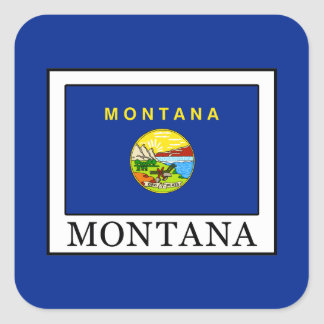 Montana Square Sticker