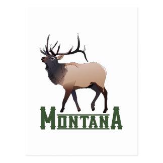 Montana Postales