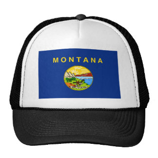 Montana United States flag Hat