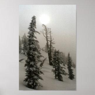 Montaña y árboles Nevado Posters