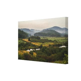 Montañas de Adirondack - niebla - Estado de Nuevo Impresión En Lienzo Estirada