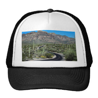 Montañas de Ajo, monumento nacional del cactus del Gorros Bordados