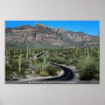 Montañas de Ajo, monumento nacional del cactus del Poster