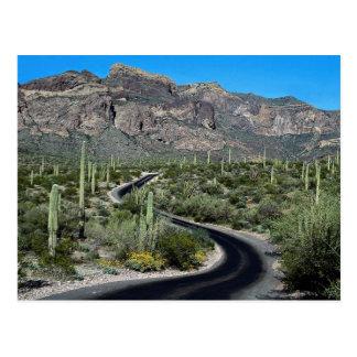 Montañas de Ajo, monumento nacional del cactus del Postales