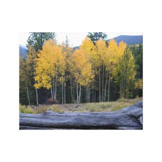 Montañas de Colorado en caída Impresión En Lona Estirada