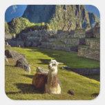 Montañas de Perú, los Andes, los Andes, Machu Pegatinas Cuadradas