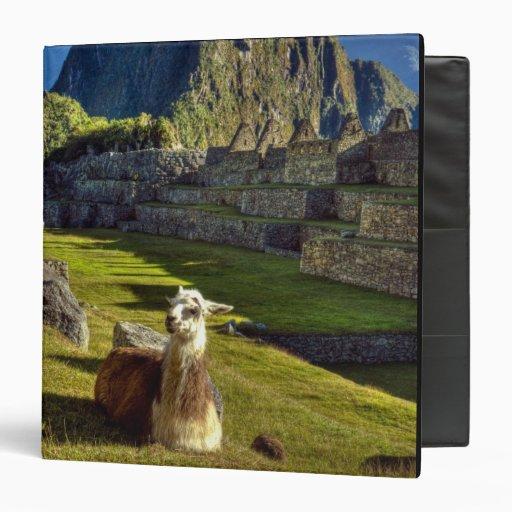 """Montañas de Perú, los Andes, los Andes, Machu Picc Carpeta 1 1/2"""""""