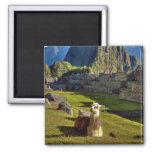 Montañas de Perú, los Andes, los Andes, Machu Picc Imán Cuadrado