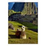 Montañas de Perú, los Andes, los Andes, Machu Picc Tarjetón
