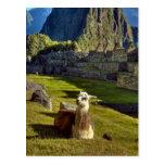 Montañas de Perú, los Andes, los Andes, Machu Picc Tarjeta Postal