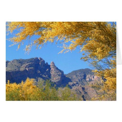 ¡Montañas de Santa Catalina abrazadas por la prima Felicitaciones