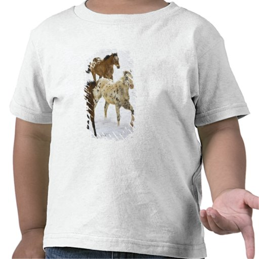 Montañas del Big Horn, caballos que corren en la Camiseta