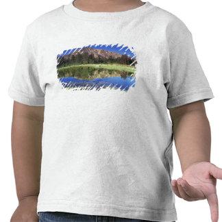 Montañas del diente de sierra reflejadas en el camisetas