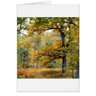 Montañas del escocés del bosque del viejo crecimie tarjeta de felicitación