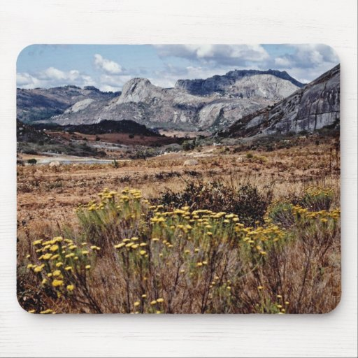 Montañas del este, flores de Zimbabwe Tapetes De Raton