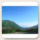 Montañas del paso Alaska de Hatcher Posavasos De Bebidas