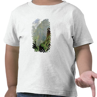 Montañas en Europa 1876 Camisetas