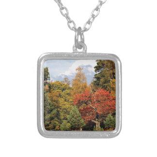 Montañas Escocia del color del otoño del bosque Pendiente