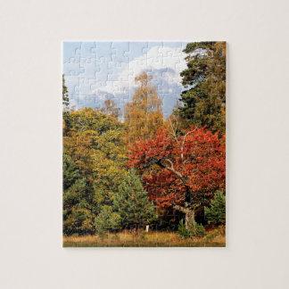 Montañas Escocia del color del otoño del bosque Puzzles Con Fotos