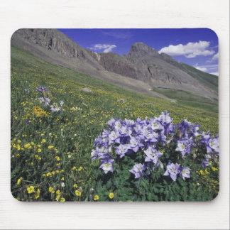Montañas y wildflowers en el prado alpino, azul mouse pad