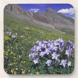 Montañas y wildflowers en el prado alpino, azul posavasos de bebida
