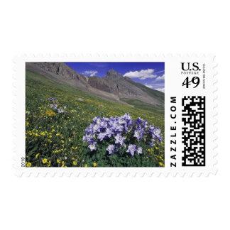 Montañas y wildflowers en el prado alpino, azul sello