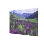 Montañas y wildflowers en prado alpino, 2 impresión en lona