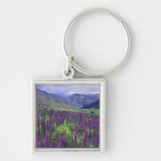 Montañas y wildflowers en prado alpino, 2 llaveros personalizados