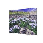 Montañas y wildflowers en prado alpino, impresión de lienzo
