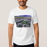 Montañas y wildflowers en prado alpino, playera